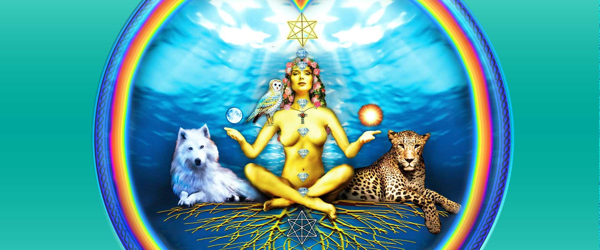 Conciencia Cuántica Universo AmmA